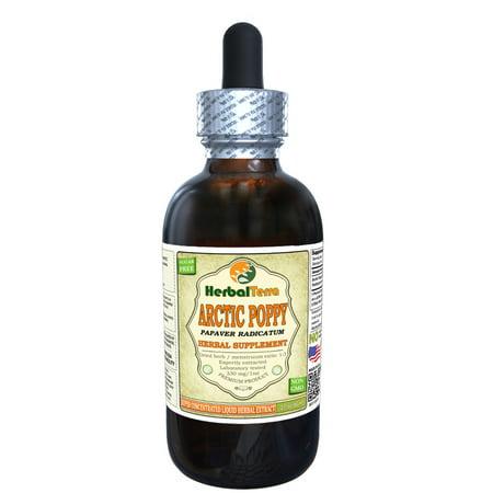 Arctic Poppy (Papaver radicatum) Tincture, Organic Dried Herb Powder Liquid Extract (Herbal Terra, USA) 2 oz ()
