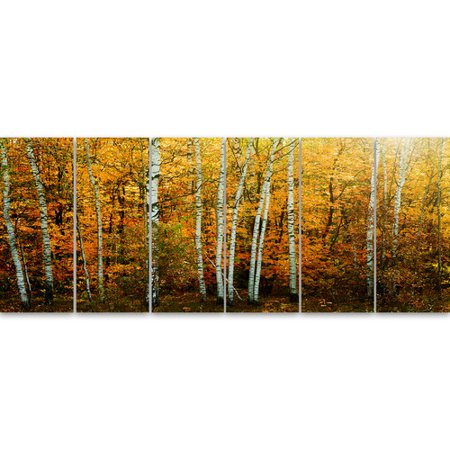 Design Art 'Yellow Colorful Autumn Forest' 6 Piece Photographic Print on Wrapped Canvas Set