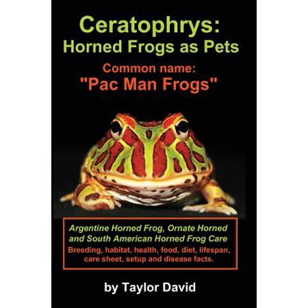Ceratophrys : Horned Frogs as Pets: Common Name: Pac Man Frogs - Pagan Halloween Name