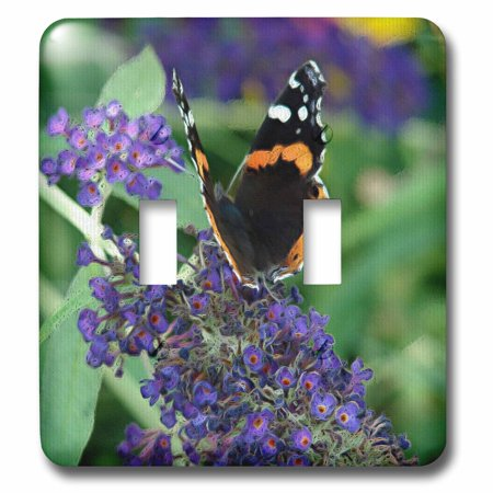 3dRose Pretty Butterfly and Purple Butterfly bush Flowers - Double Toggle Switch