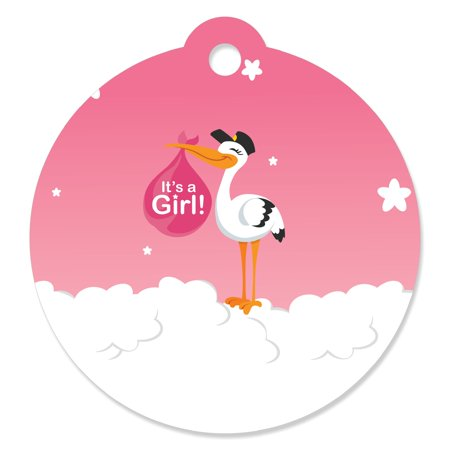 (Girl Special Delivery - Pink It's A Girl Stork Baby Shower Favor Gift Tags (Set of 20))