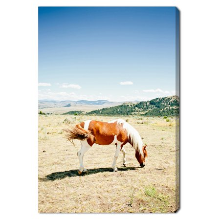 Oliver Gal \'Cassandra Eldridge - Willow The Horse\' | Horses and ...