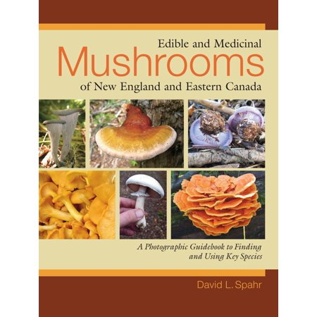 Edible and Medicinal Mushrooms of New England and Eastern Canada : A Photographic Guidebook to Finding and Using Key