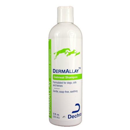 DermAllay Oatmeal Shampoo (12 oz) (Colloidal Oatmeal Shampoo)
