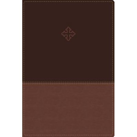 Amplified Study Bible, Imitation Leather, Brown,
