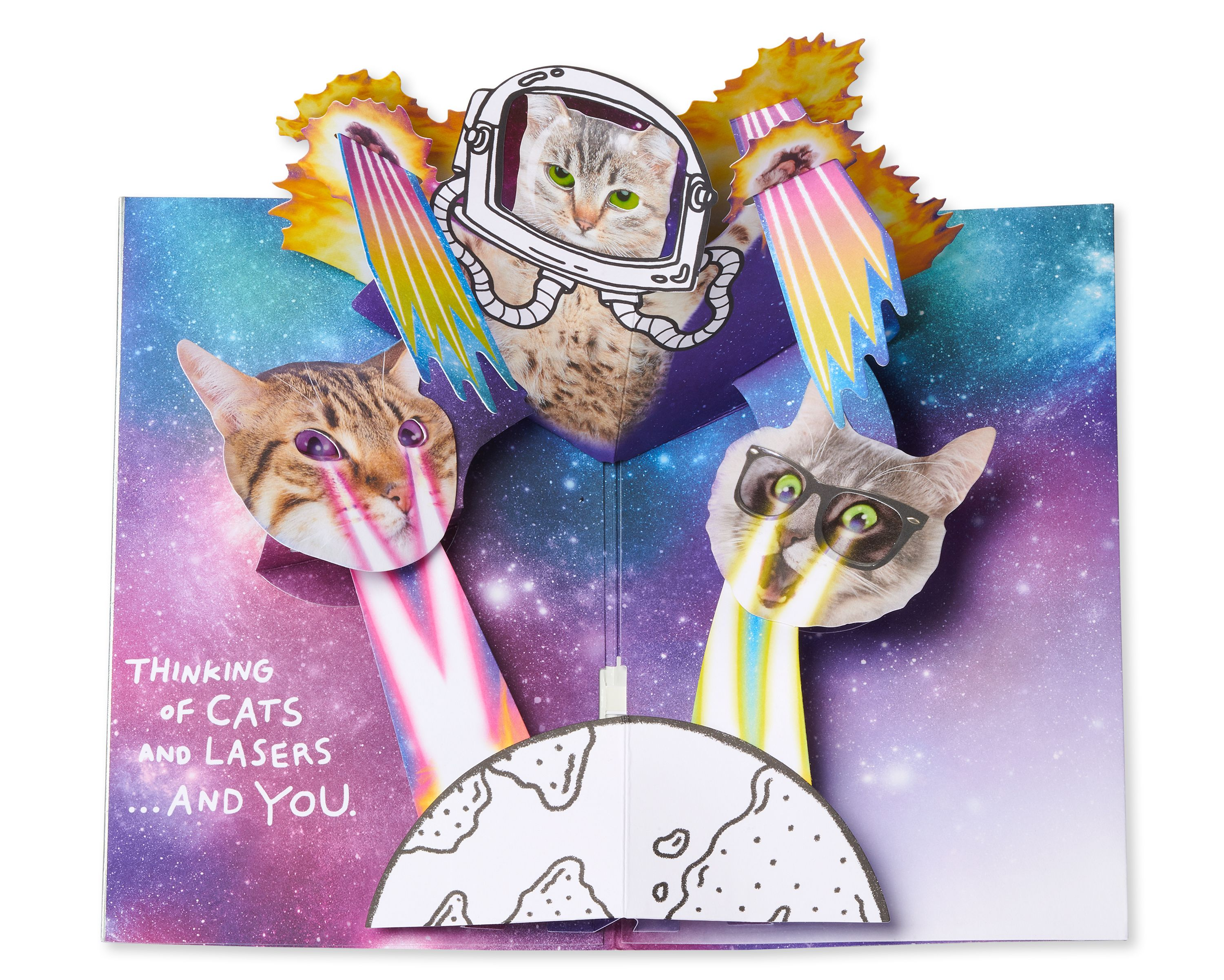 Cats are Awesome Greeting Card