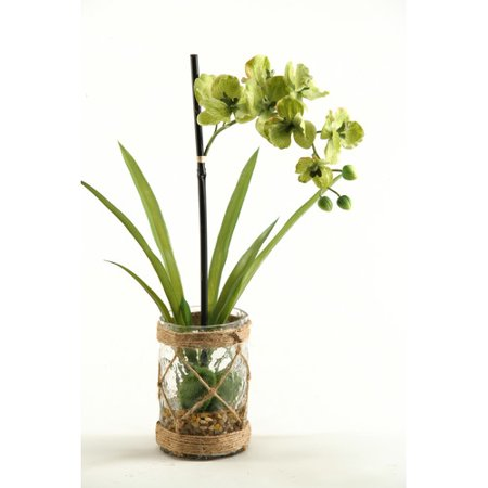 D W Silks Vanda Orchids With Foliage And Seagrass Netting In Glass