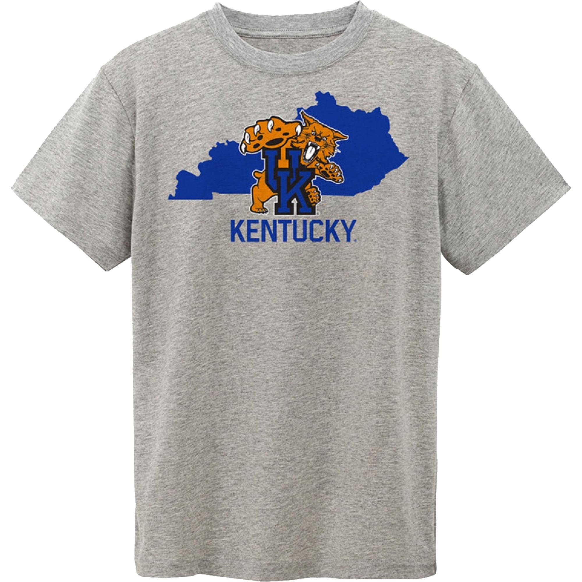 Toddler Gray Kentucky Wildcats State T-Shirt