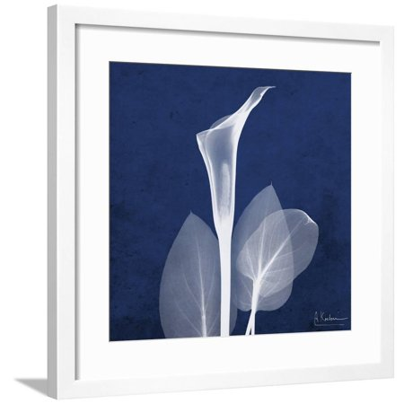 One Indigo Calla Lily Framed Print Wall Art By Albert Koetsier