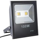Outdoor floodlights yescom 100w 2 leds flood light ip65 spotlight outdoor garden garage security lighting lamp aloadofball Images