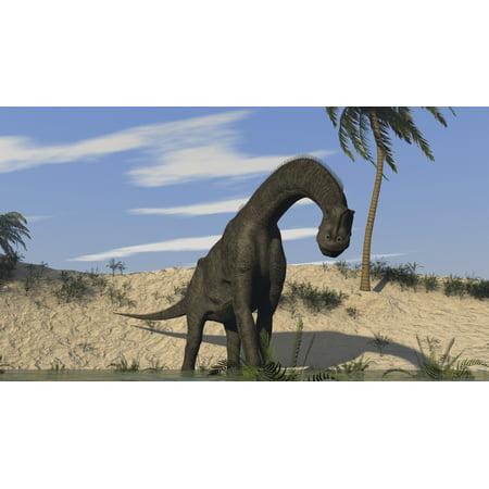 Brachiosaurus Poster - Large Brachiosaurus standing in water Poster Print