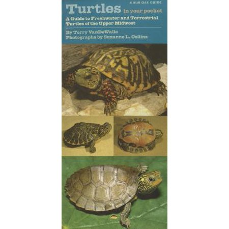 Turtles in Your Pocket : A Guide to Freshwater and Terrestrial Turtles of the Upper (1 Title Pocket)