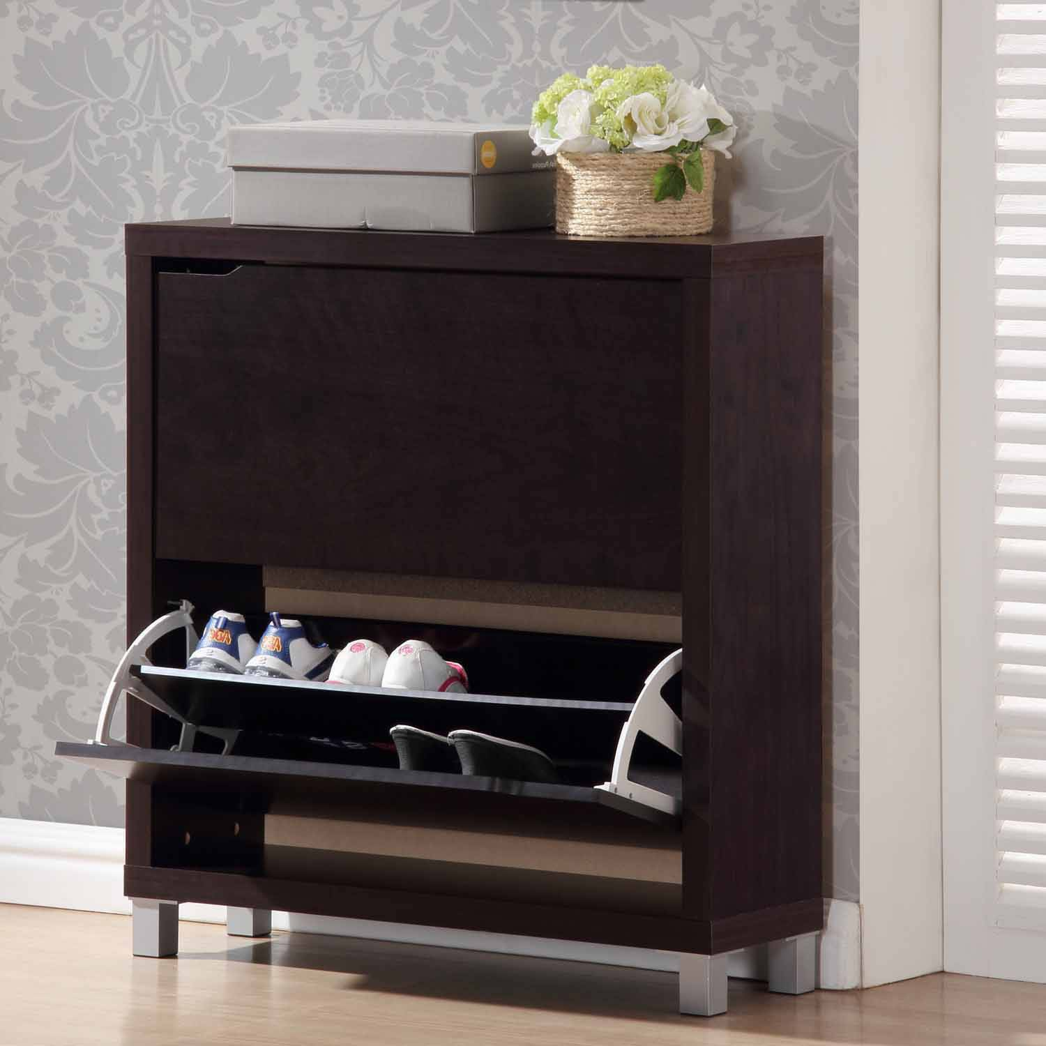 Simms 2 Storage Modern Shoe Cabinet, Multiple Colors