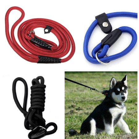 Nylon Slip Leash (59