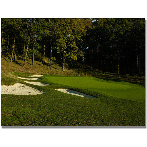 "Trademark Fine Art ""Golf 12"" Canvas Wall Art"