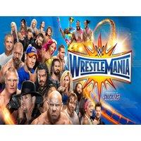 WWE World Wrestling Entertainment Wrestle Mania Randy Orton Bray Wyatt Roman Reigns Edible Cake Topper Image ABPID00296V2