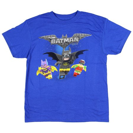 Lego Batman Boys' Robin Batgirl Animated Cartoon Movie Character Cotton T-Shirt (Batman And Robin Suits)