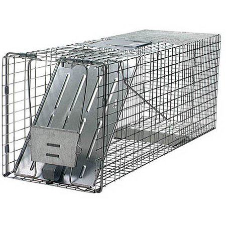 - Havahart Large 1-Door Animal Trap - 32-Inch