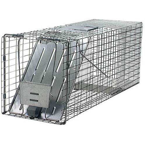 Havahart Large 1-Door Live Animal Cage Trap