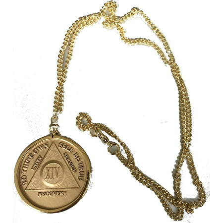 AA NA Medallion Holder Necklace Gold Plated 22