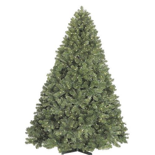 Christmas at Winterland WL-TRSQ-14 Trees , Holiday Decor, Warm White