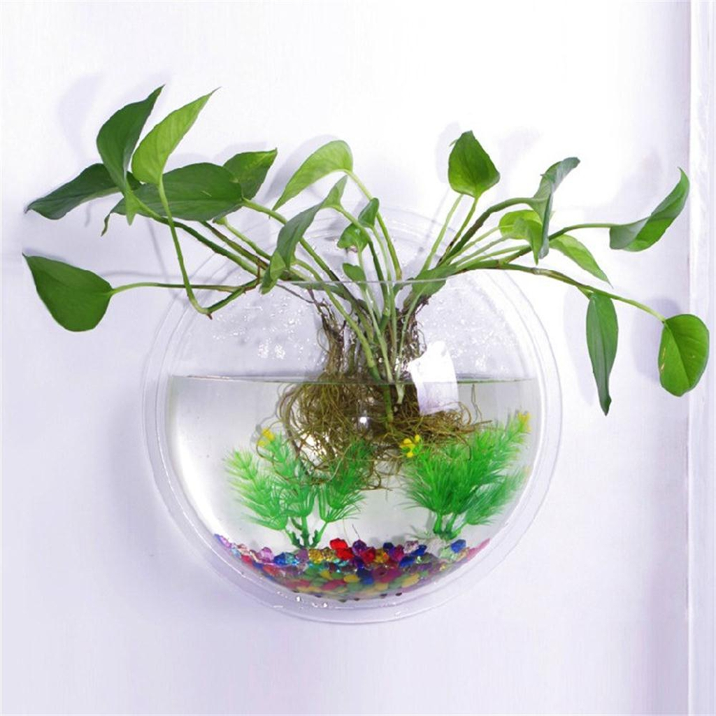 Walmart aquarium plants good full size of fish tank for Good place to fish near me