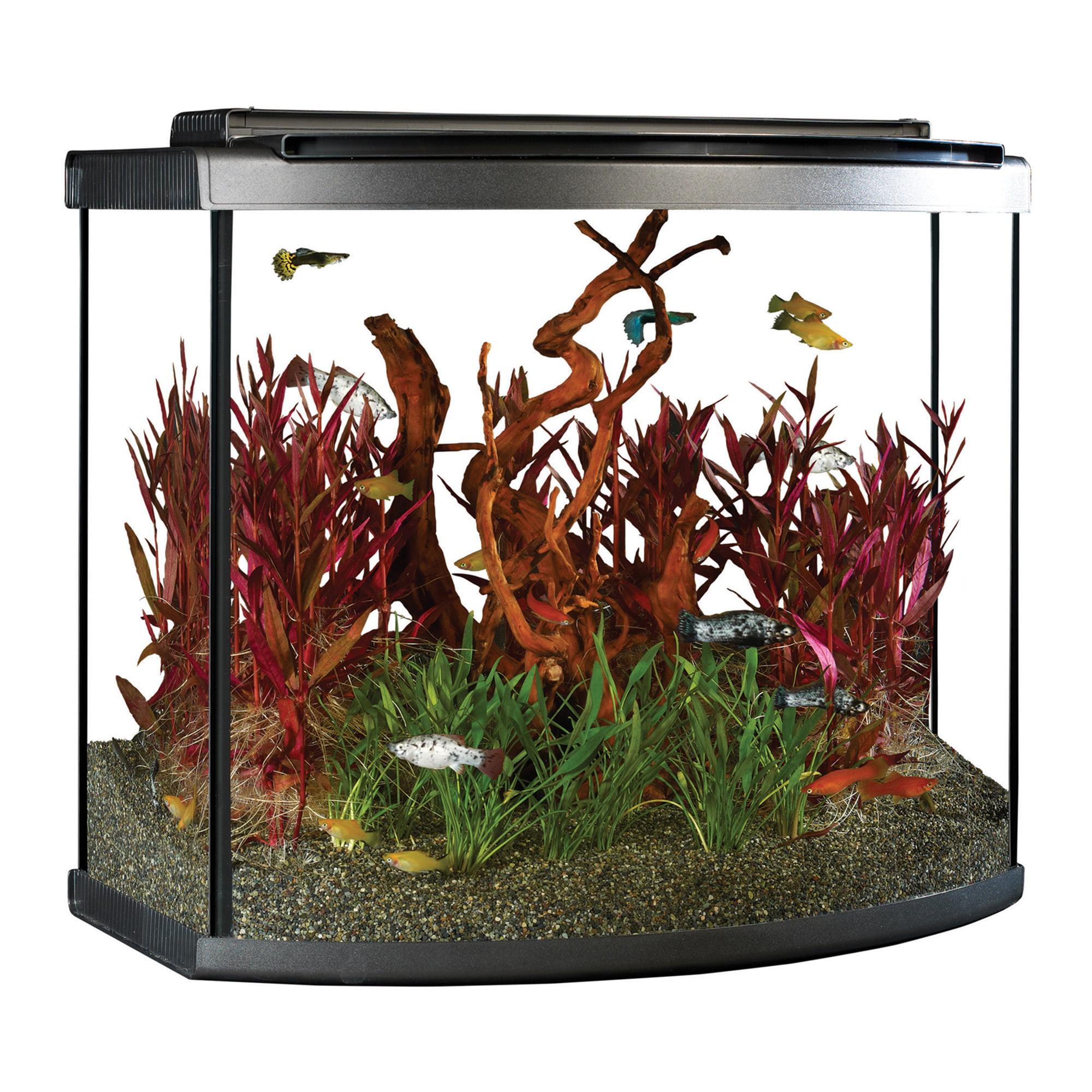 Fluval 26-Gallon Bow LED Aquarium Starter Kit by Hagen