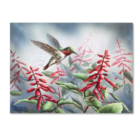 Debbie Mumm Bird - Trademark Fine Art 'Summer Hummingbird' Canvas Art by Wanda Mumm