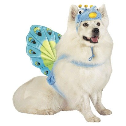 Peacock Pet Dog Costume - Size Large - 25 - 50 lbs by, Peacock Fan tail attaches to pet back & hat By Target Ship from - Target Dog Commercial Halloween