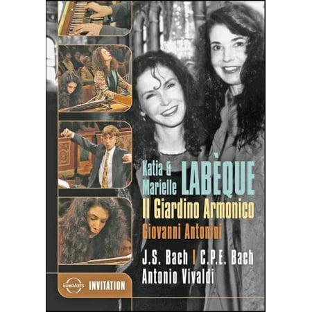 Violin Concerto (DVD) (Violin Concerto Dvd)