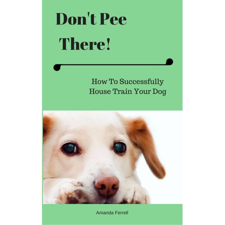 Don't Pee There! How To Successfully House Train Your Dog - (Best Dogs To House Train)