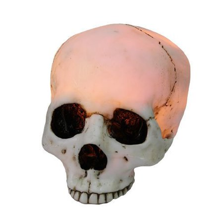 Glowing Skeleton - 7 Inch Night Glowing Skeleton Skull Resin Statue Figurine