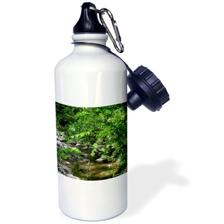 3dRose Within the woods A nature scene of a creek and trees, Sports Water Bottle, - Sports Scene Store