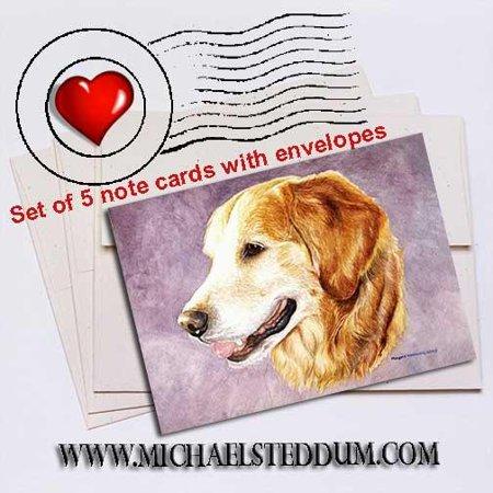 Golden Retriever Head Study Note Card Set Golden Retriever Note Cards