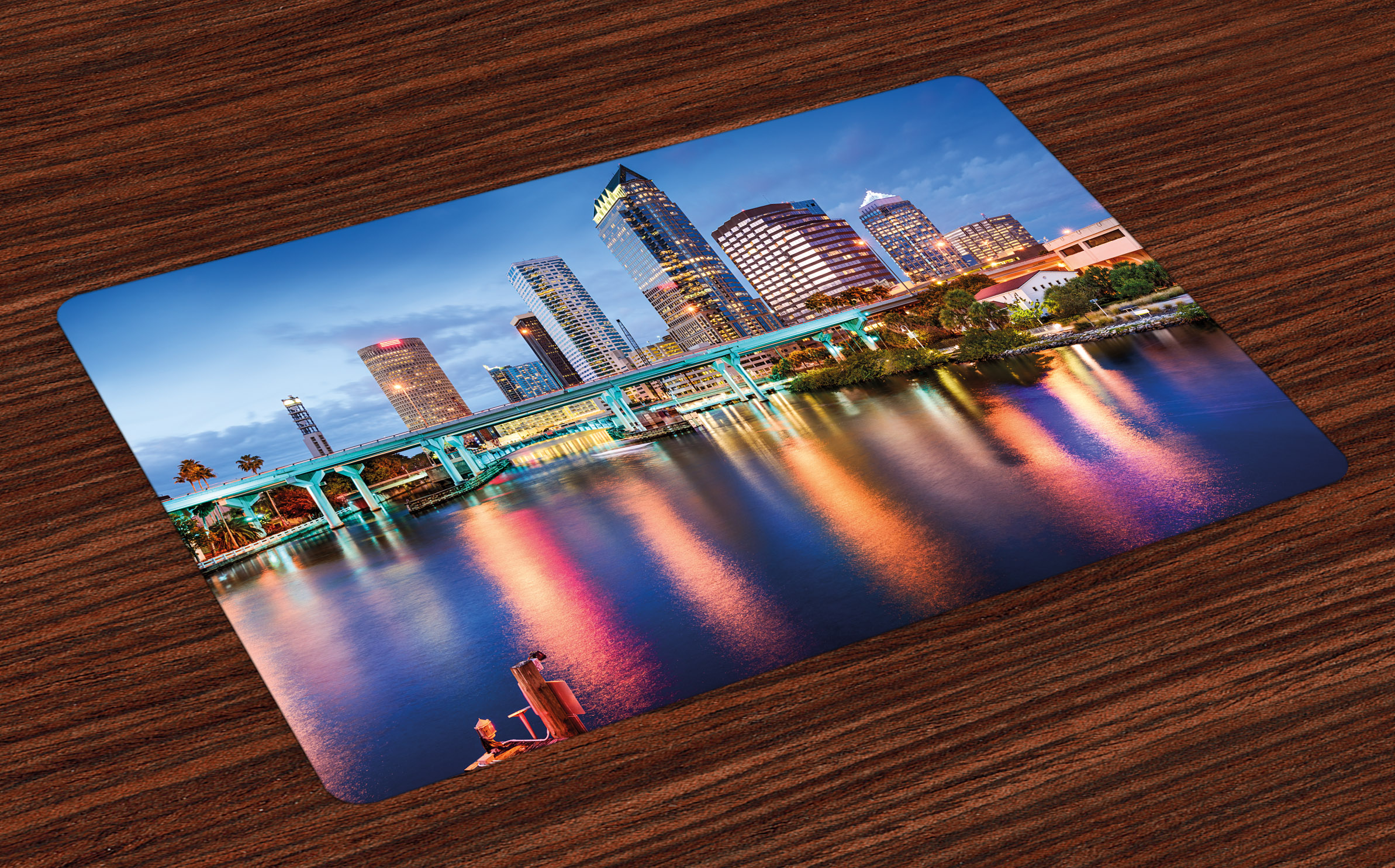 City Placemats Set Of 4 Hillsborough River Tampa Florida