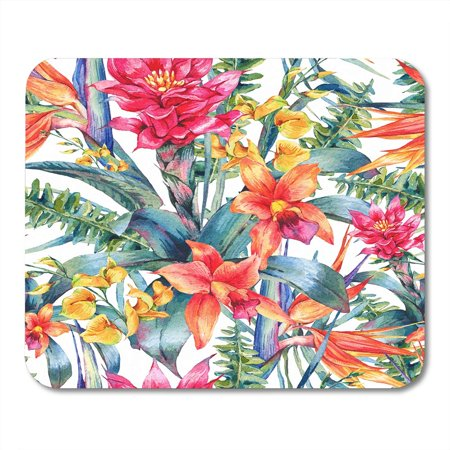 SIDONKU Watercolor Vintage Floral Tropical Exotic Flowers Bird of Paradise Twigs and Leaves Botanical Bright Mousepad Mouse Pad Mouse Mat 9x10 inch