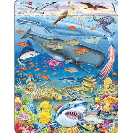 Larsen Whale Reef 66 Piece Children