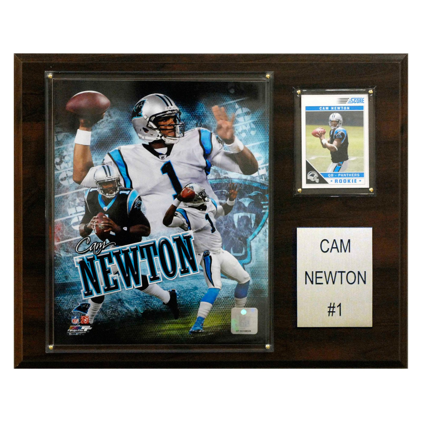 C&I Collectables NFL 12x15 Cam Newton Carolina Panthers Player Plaque
