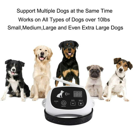 2 Dogs Wireless Pet Containment System Wireless Dog Fence