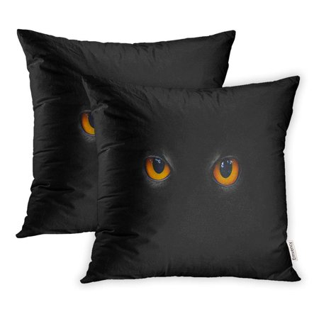Scary Eyes For Halloween (USART Fear The Evil Eyes Cat Halloween Freak Eagle Beast Animal Scary Pillowcase Cushion Cover 16x16 inch, Set of)