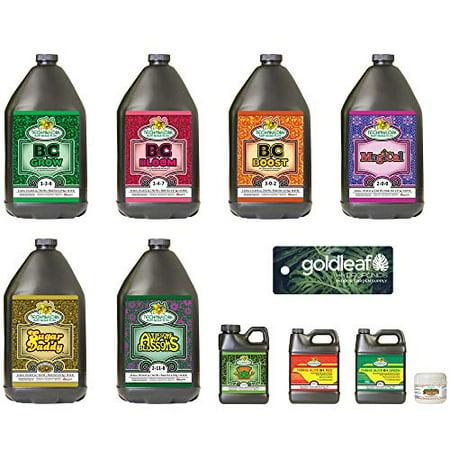 Technaflora Recipe For Success Complete Nutrient Kit - Large