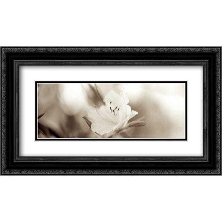 104 Matt - Florison - 104 2x Matted 24x14 Black Ornate Framed Art Print by Blaustein, Alan