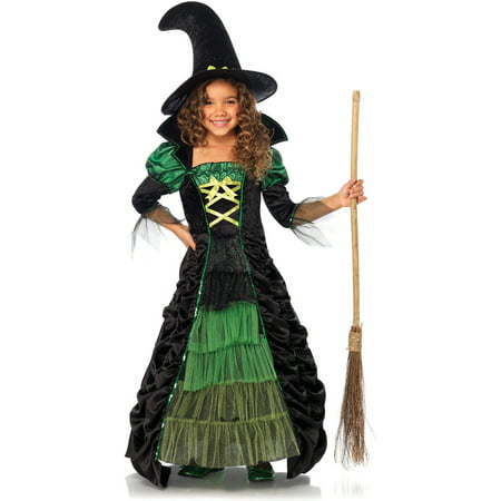 Halloween Witch Costume Accessories (Storybook Witch Halloween)