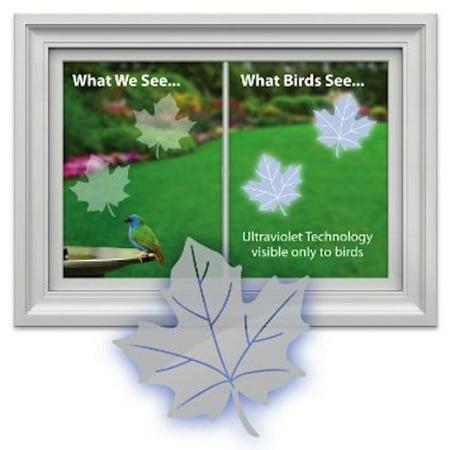 Window Alert Bird - Window Alert WINDA1 Maple Leaf (4 per package)