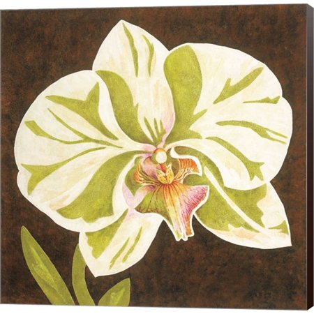Metaverse Judy Shelby 'Surabaya Orchid Petites A' Canvas Art