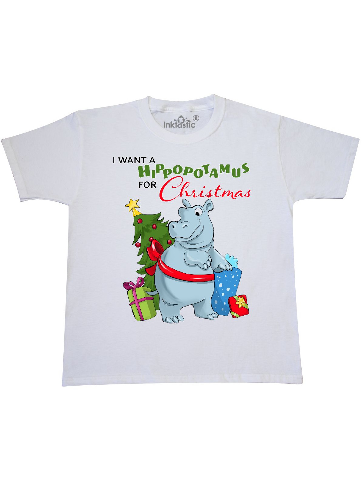I Want a Hippopotamus for Christmas Youth T-Shirt