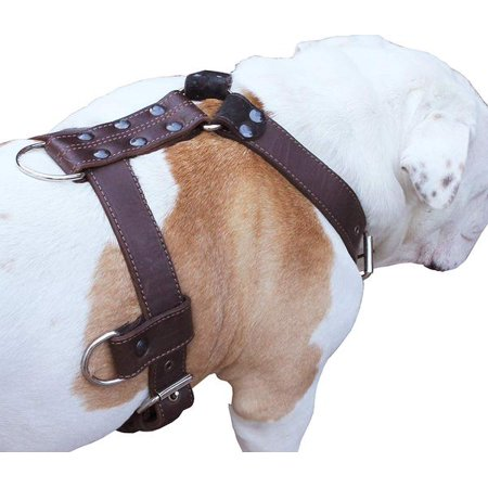 "Genuine Leather Dog Harness Brown X-Large 33""-40"" Chest, 1.3"" Wide Adjustable Straps"