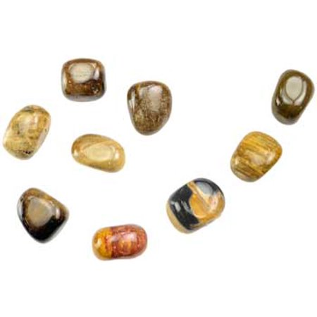 Petrified Wood Gem (RBI Gemstone 1 lb Petrified Wood Tumbled Stones Magical Crystal Healing Enlightenment )