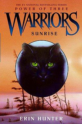 Warriors Power Of Three Book 6