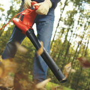 Best Leaf Vacuum Mulchers - Black & Decker BV3600 - 12 Amp Blower/Vacuum Review